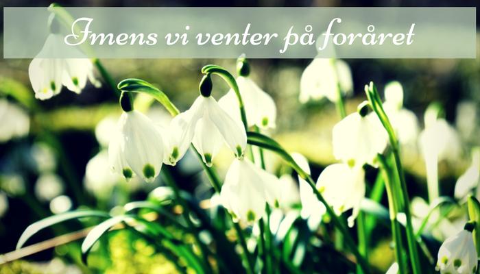 Imens vi venter på foråret