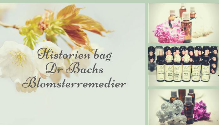 Det vidste du ikke om din stueplante. – Dr Bachs blomsterremedier